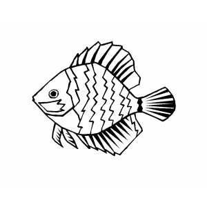 Discus Fish coloring page