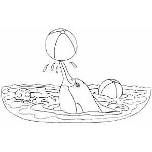 Dolphin Playing With Ball coloring page