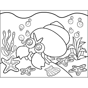 Hermit Crab coloring page