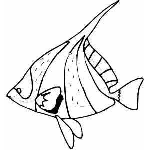 coloring pages fish ocean - photo#33