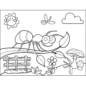 Ant on Branch coloring page