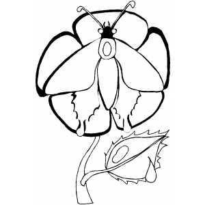 Butterfly Eating On Flower coloring page