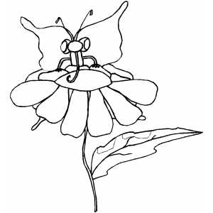 Butterfly Sitting On Flower coloring page