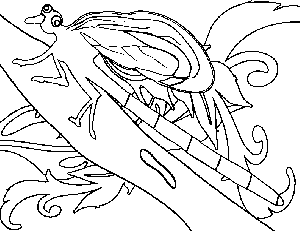 Dragon Fly on Branch coloring page