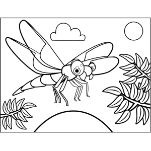 Flying Dragonfly coloring page