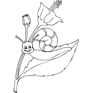 Snail on Flower coloring page