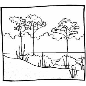 Bay Over The Forest coloring page