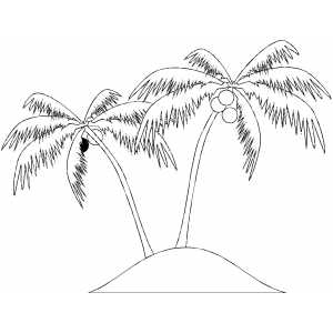 Palms With Pineapples coloring page