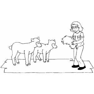 Girl Feeding Lambs coloring page