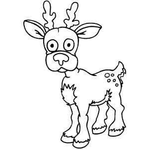 Surprised Deer coloring page