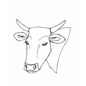 Calm Bull Head coloring page