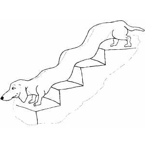 Dachshund On Stairs coloring page