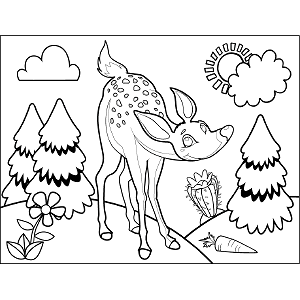 Deer Fawn coloring page
