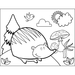 Happy Hedgehog coloring page