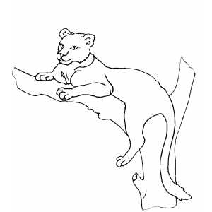 Lioness Resting By Tree coloring page