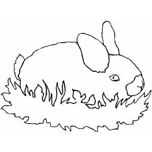 Rabbit In Grass coloring page