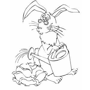 Rabbit Watering Cabbage coloring page