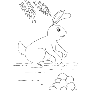 Sneaky Bunny coloring page