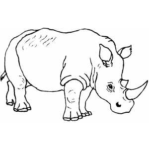 Walking Rhino coloring page