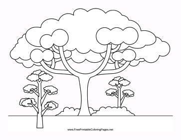 Arbor coloring page