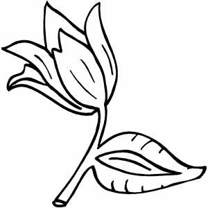Flower On Branch coloring page