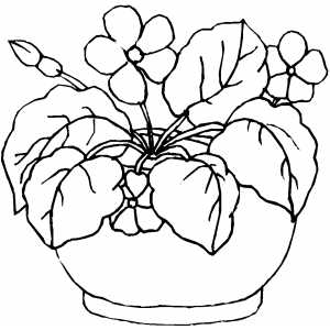 Flowers In Round Pot coloring page