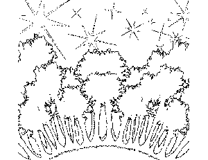 Forest and Stars Coloring Page