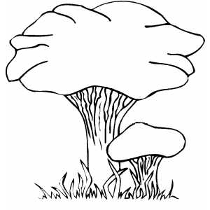 Fox Mushrooms coloring page