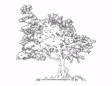Growing coloring page