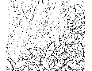 Leaf Pile Coloring Page
