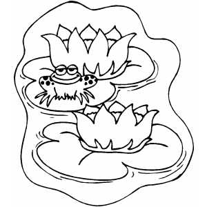 Lily Pads coloring page