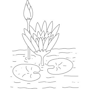 Lilypad Flowers coloring page