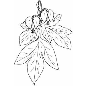 Looking Down Bells Flowers coloring page