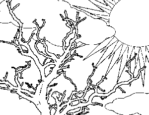 Morning Tree Coloring Page