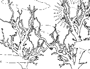 Morning Tree Tops Coloring Page
