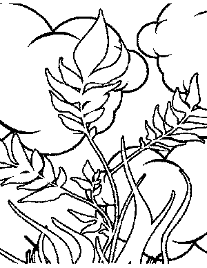 Plants and Clouds Coloring Page