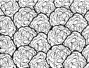 Rose Pattern Coloring Page
