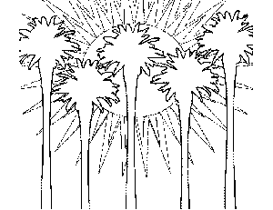 Southbeach Palms Coloring Page