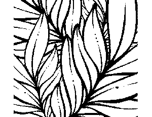 Tropical Leaves Coloring Page