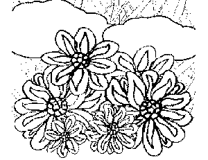 Wild Flowers coloring page