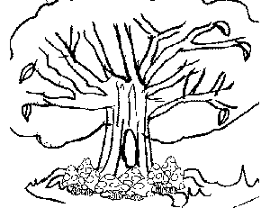 Wild Tree coloring page